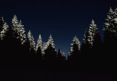 Nočné dobrodružstvo spoza plota