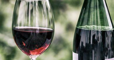 O rozmanitosti vína a ľudí